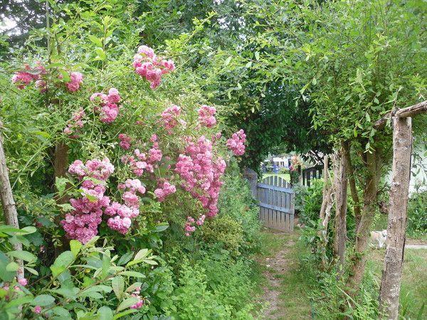 Visite des jardins for Jardins a visiter
