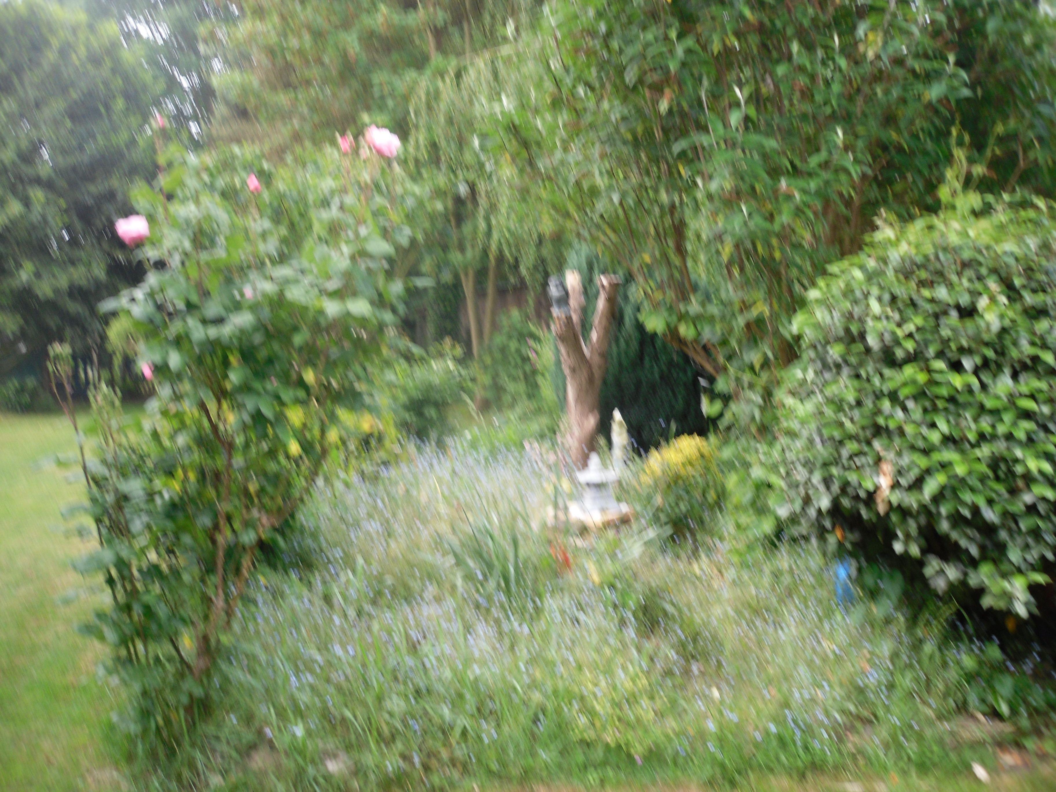 En allant aux jardins for Le jardin aux epilobes